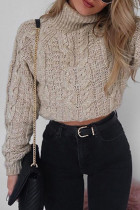 Khaki Turtleneck Solid crop top Cotton Pure Long Sleeve  Sweaters & Cardigans MMY01022