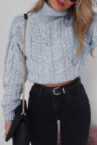 Grey Turtleneck Solid crop top Cotton Pure Long Sleeve  Sweaters & Cardigans MMY01022