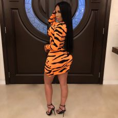 Sexy Zebra Print Club Dress ML-7175